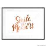 Smile-Copper