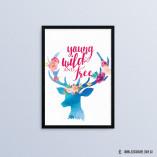 YWF-Deer
